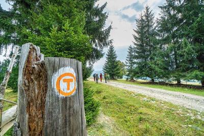 Traseu-Via-Transilvanica